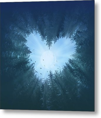 Forest Heart 2 Metal Print