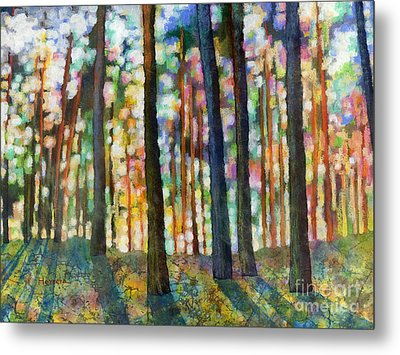 Forest Light Metal Print by Hailey E Herrera