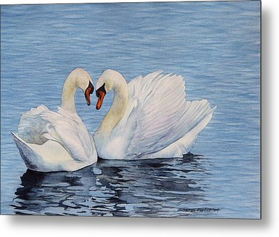 Forever Swans Metal Print by Sharon Farber