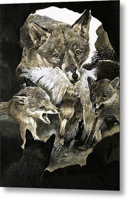 Fox Delivering Food To Its Cubs  Metal Print by English School