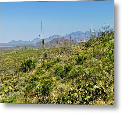 Franklin Mountains State Park Facing North Metal Print
