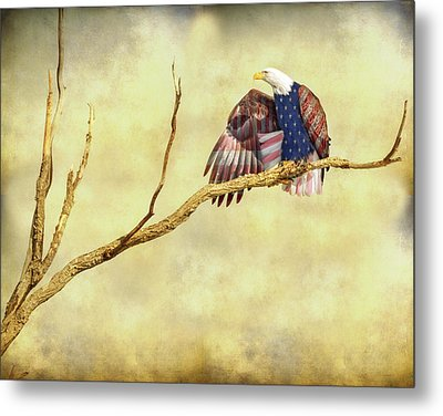 Metal Print featuring the photograph Freedom by James BO Insogna