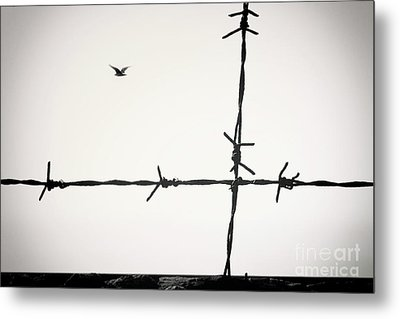 Freedom To Be Yourself... Metal Print
