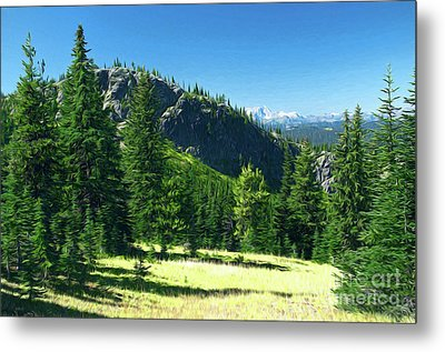 Metal Print featuring the photograph Fresh Air In The Mountains Photo Art by Sharon Talson