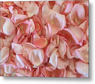 Fresh Rose Petals Metal Print