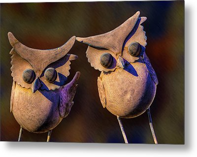 Metal Print featuring the photograph Frick And Frack by Paul Wear