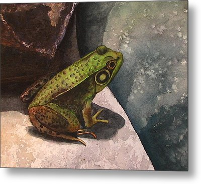 Frog Metal Print by Sharon Farber
