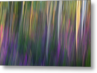Fuchsia At Dawn Metal Print