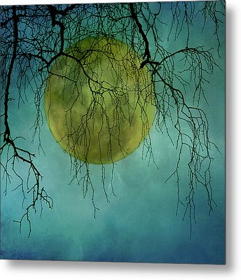 Full Moon Metal Print by Jill Ferry