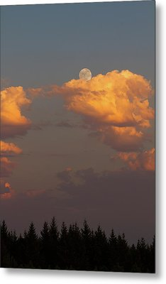 Full Moonrise Over Tree Silhouette Metal Print by David Gn