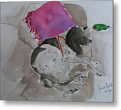 Fulmi And Pink Pillow Metal Print by Janet Butler