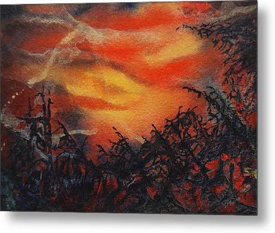 Fury Metal Print by Shirley McMahon