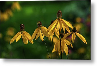 Garden Dancers Metal Print by Don Spenner