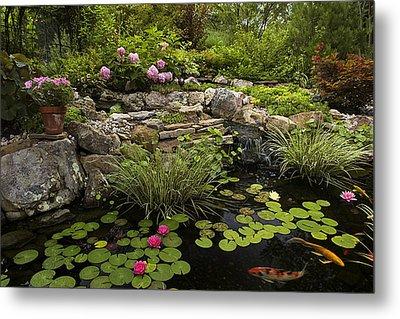 Garden Pond - D001133 Metal Print by Daniel Dempster