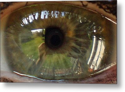 Garden Reflected In Eye Metal Print by Shirley anne Dunne