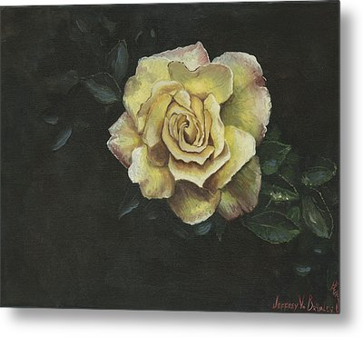 Garden Rose Metal Print by Jeff Brimley
