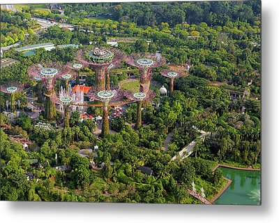 Gardens By The Bay Metal Print by David Gn