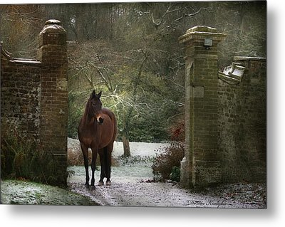 Gate To Another World Metal Print by Dorota Kudyba
