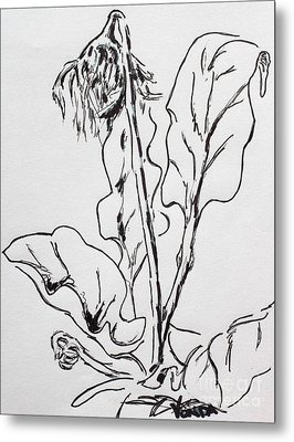 Metal Print featuring the drawing Gerber Study I by Vonda Lawson-Rosa