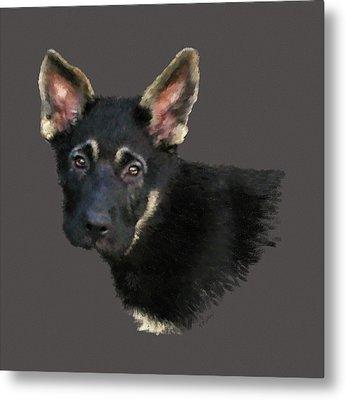 German Shepard Puppy Metal Print