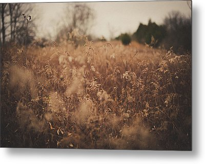 Metal Print featuring the photograph Ghost by Shane Holsclaw