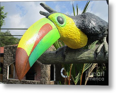 Giant Toucan Metal Print by Randall Weidner