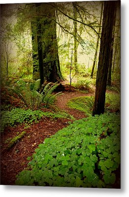 Giants Pathway Metal Print