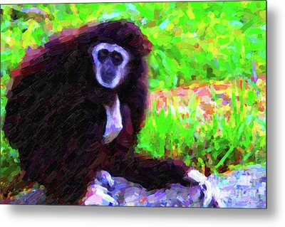 Gibbon Metal Print by Wingsdomain Art and Photography