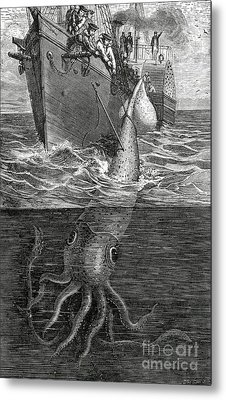 Gigantic Cuttle Fish Metal Print by English School