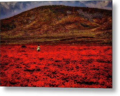 Girl In Poppy Field Metal Print by Garry Gay