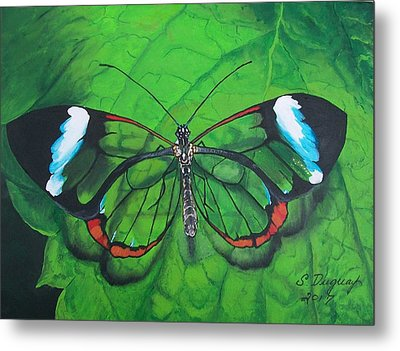 Glass Wing Butterfly Metal Print by Sharon Duguay