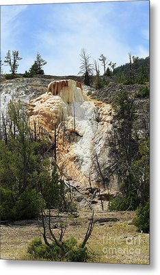 Glen Spring At Mammoth Hot Springs Upper Terraces Metal Print by Louise Heusinkveld