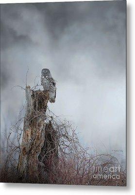 Gloomy Sunday  Metal Print by Heather King