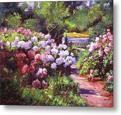 Glorious Blooms Metal Print by David Lloyd Glover