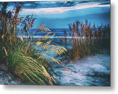 Glowing Dunes Before Sunrise On The Outer Banks Metal Print
