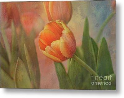 Glowing Tulip Metal Print by Joan Bertucci