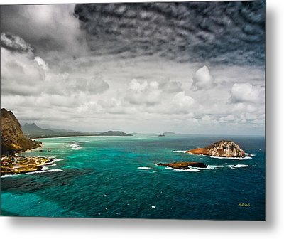 Going Coastal Metal Print by Mitch Shindelbower