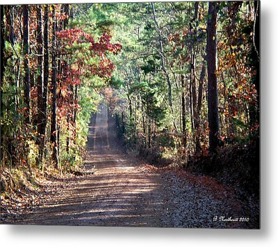 Metal Print featuring the photograph Going Home by Betty Northcutt