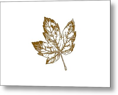 Gold Leaf Metal Print by Chastity Hoff