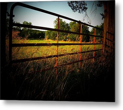 Golden Country Fence Metal Print by Joyce Kimble Smith