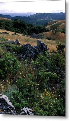 Golden Hills Of Summer Metal Print by Kathy Yates