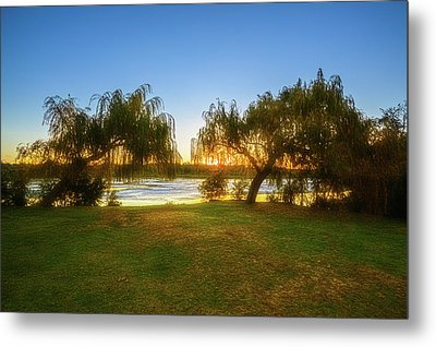 Golden Lake, Yanchep National Park Metal Print by Dave Catley