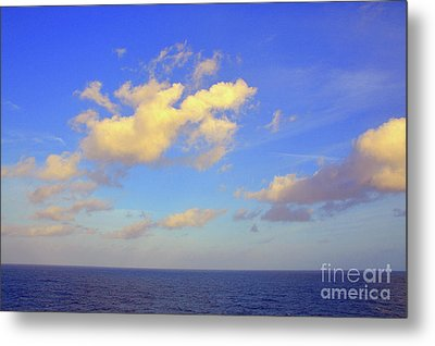 Golden Opportunity Metal Print by Robyn King