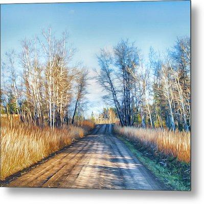 Goose Lake Road Metal Print by Theresa Tahara