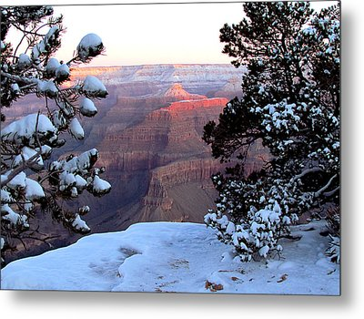 Grand Canyon In Winter Metal Print by Judy Wanamaker