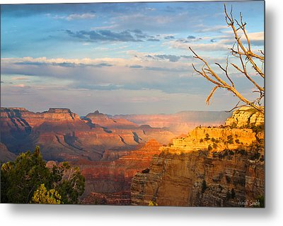 Grand Canyon Splendor Metal Print