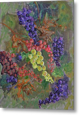 Grapes On The Vine Art Metal Print by Ken Figurski
