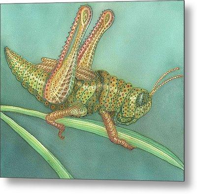 Grasshopper Metal Print by Anne Havard