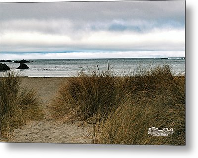 Grassy Beach Metal Print by William Havle