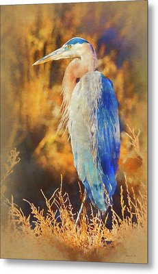 Metal Print featuring the photograph Great Blue Heron by Bellesouth Studio